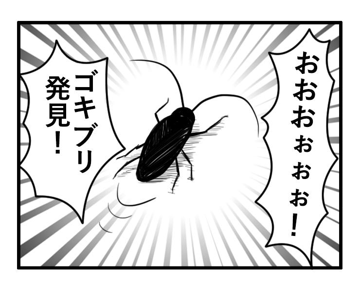 繁殖前に駆除したい!ゴキブリの卵・幼虫の効率的な探し方と駆除
