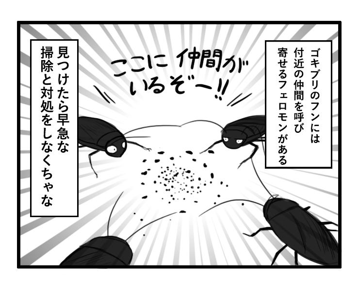 フン ゴキブリ の